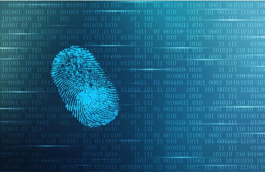 Digital Identity NSW Council