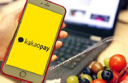 Kakao Corp Blockchain Singapore Investment