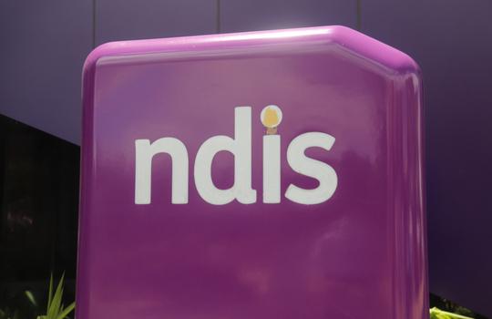 NDIA NDIS Insurance Disability APIs